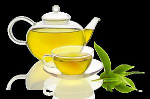 Les Bienfaits du Thé Vert bio antioxydant