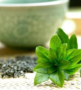 Le thé bio et ses vertus