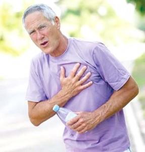Le thé vert bio pour la protection cardio-vasculaire